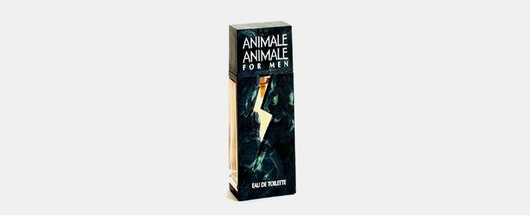 Perfumes Importados Para Encontros | Animale Animale Masculino Eau de Toilette | Sieno Perfumaria